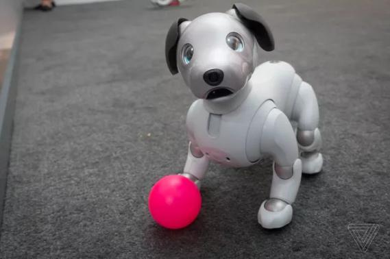 索尼新版机器狗Aibo登陆美国 点头眨眼逼真可爱
