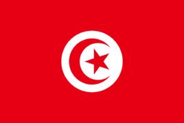 突尼斯国家概况