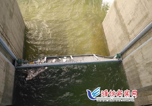 潍坊泄洪水库负责人:一旦垮坝百万人将遭灭顶,水库不容有失