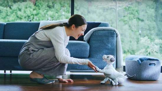 索尼的AI大业 从一只小狗开始