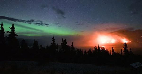 壮观!加拿大绿色极光与熊熊野火相伴照亮夜空