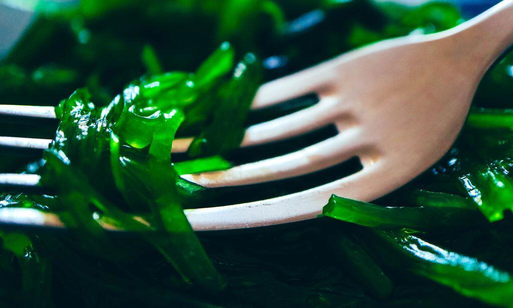 法国卫生安全局:警惕!食用藻类过量可能有危害