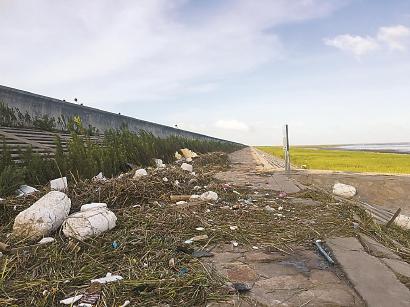 """原生态海滩成""""网红"""" 安全和环⊙境谁来管"""