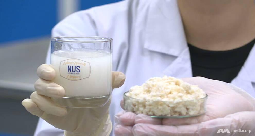豆渣变身益生菌饮料 无需冷藏可常温存放
