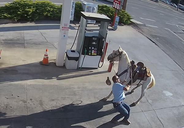 笑skr人!美醉酒男子骑马去加油摔下马被拖行