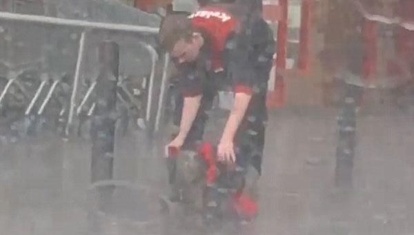 暖心!爱尔兰商店员工给雨中小狗披外套走红网络