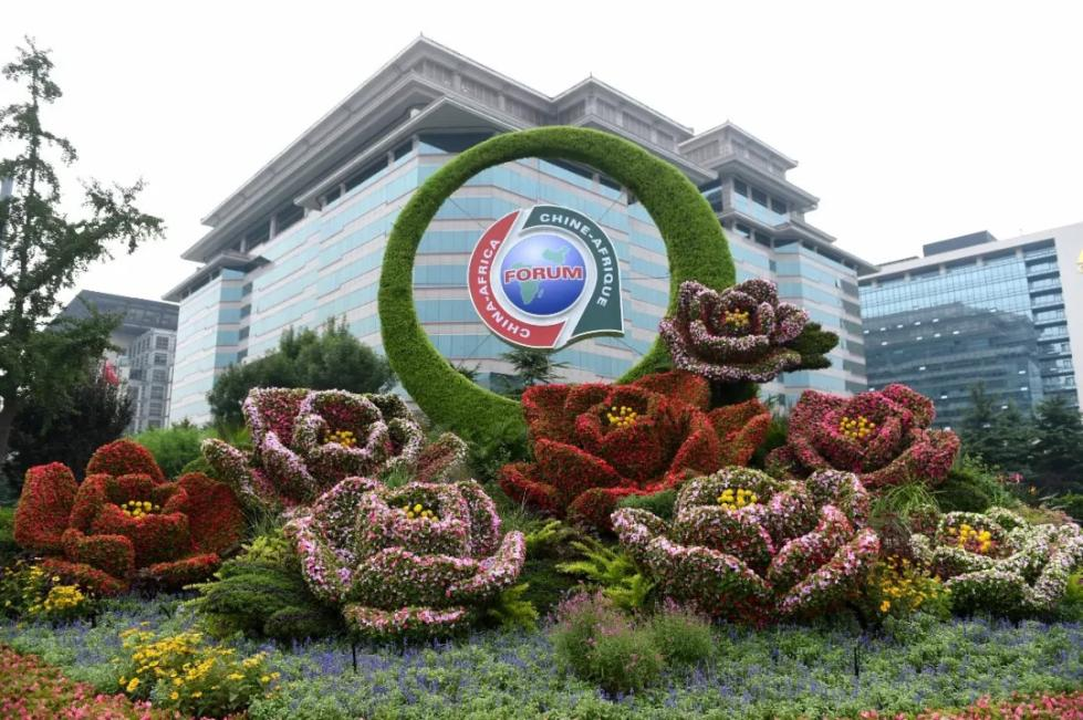 今年中国规模最大的主场外交!聚焦中非合作论坛北京峰会四个看点