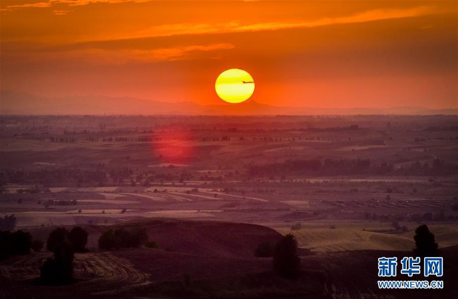 新疆:麦海秋韵