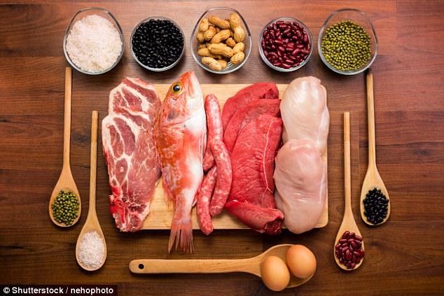 男性缺乏蛋白质可能导致后代肥胖