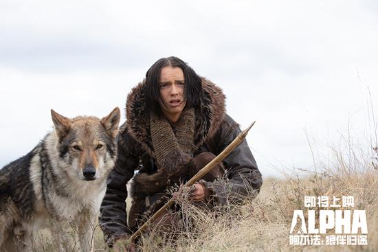 《阿尔法:狼伴归途》发特辑 冒险狼队友成长史