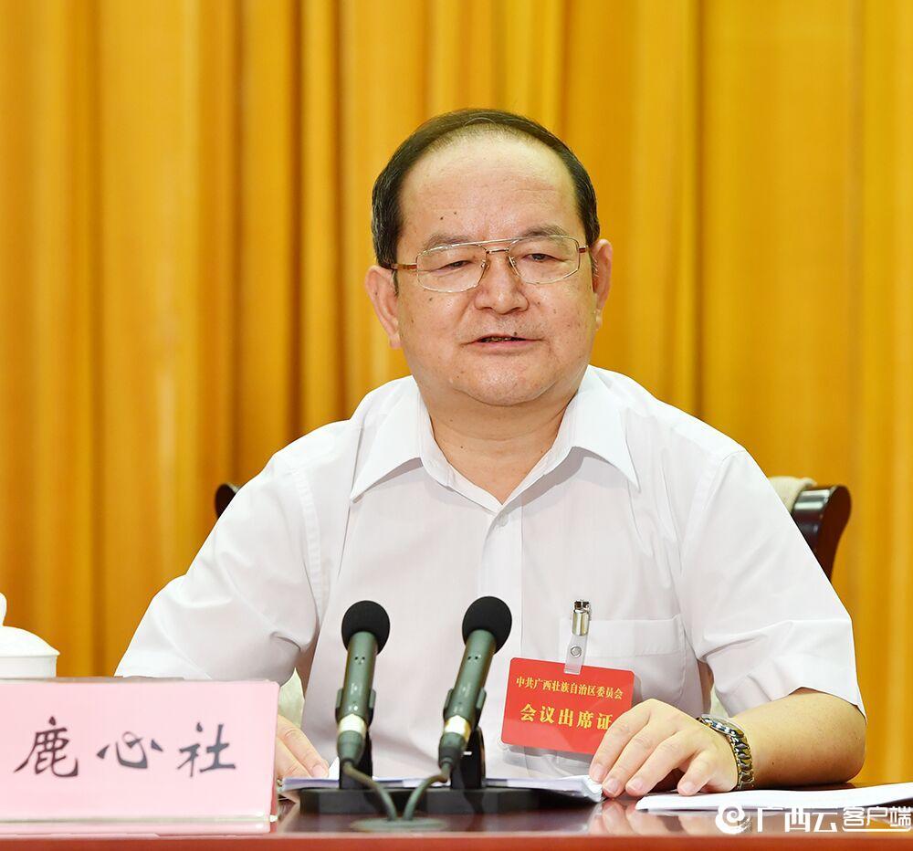 自治区党委政府召开数字广西建设大会 鹿心社陈武讲话