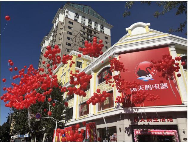 国美超级新物种黑天鹅生活馆在哈尔滨正式开业