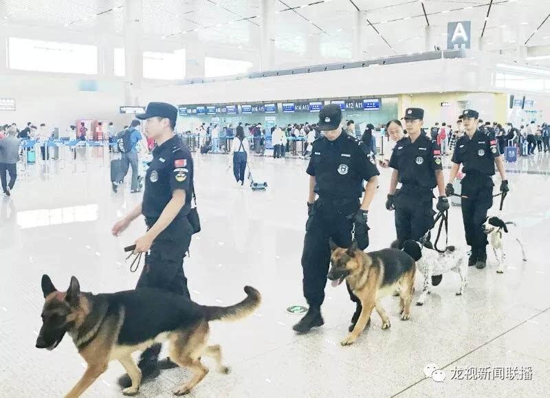 """哈尔滨机场迎来""""新卫士"""""""