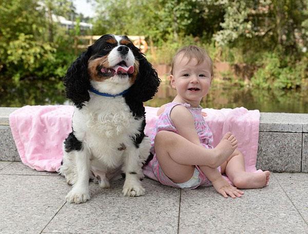 英女婴半夜呕吐不止 狗狗及时发现叫来救援