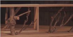 DIY原木树枝壁挂,瞬间提升你的房间格调