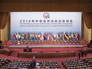 非洲媒体点赞中非合作论坛北京峰会:新的握手,新的拥抱,新的起点