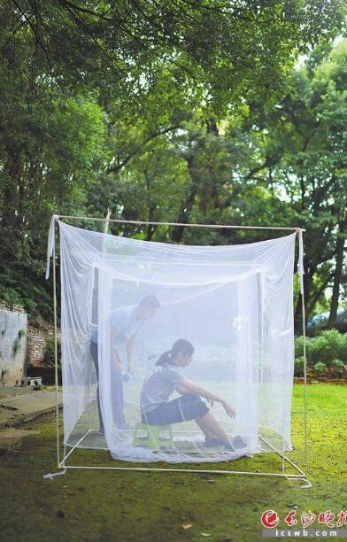 """9月将迎""""秋蚊子""""小高峰:积水及时清,蚊子自然少"""
