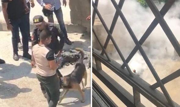 美国驻埃及使馆附近被捕男子系背包起火