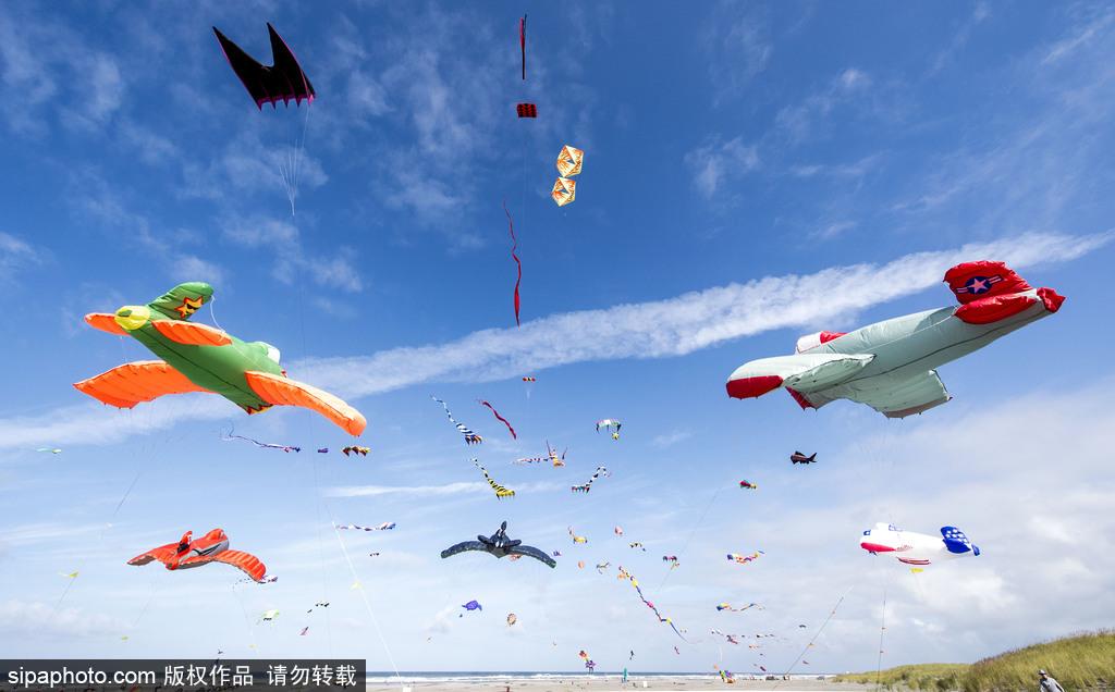 造型夸张可爱场面壮观异常!美国华盛顿州国际风筝节如约而至