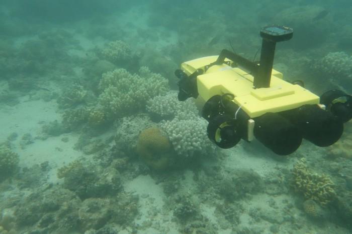棘冠海星杀手:这个无人潜水器将守卫大堡礁