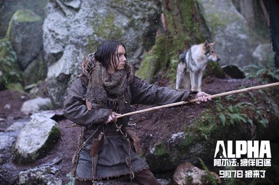 《阿尔法:狼伴归途》明日上映  吴秀波力荐