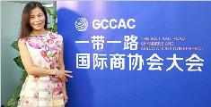 专访北京温州商会秘书长王燕:商协会的联动作用不可估量
