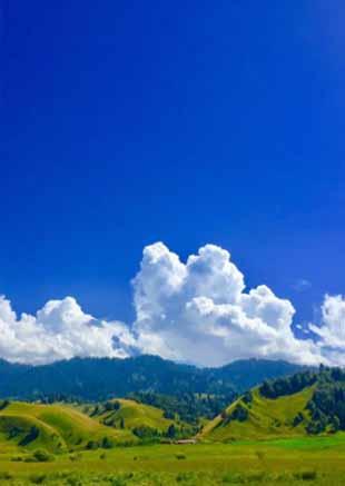 那拉提草原风景美!