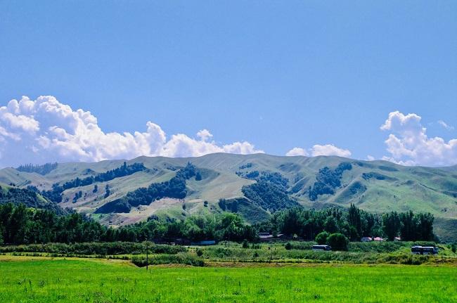 那拉提草原,每一张都是风光壁纸
