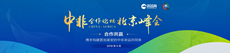 世界脑力锦标赛全球总决赛闭幕朝鲜选手夺总冠军