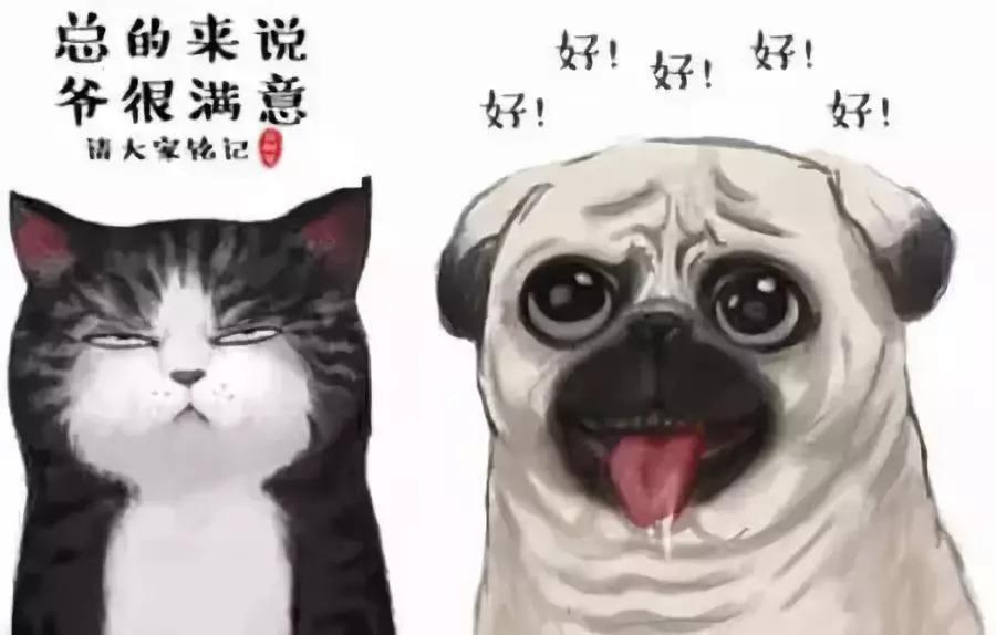中国人养宠物花了1708亿元 这些数据看了让人惊呆