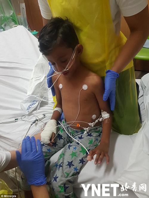 英国7岁男孩与父母在埃及度假 遭遇食物中毒为生命而战