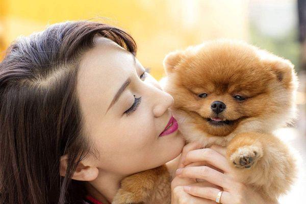 英媒:中国人的宠物消费飙升引发争议