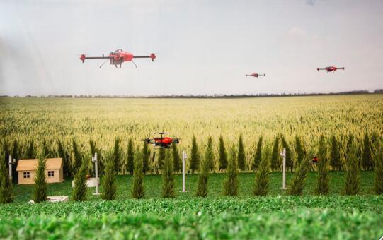 植保用上无人机 节水节药又省力——起飞,为庄稼喷药去