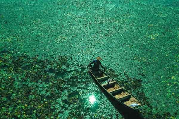 航拍马鞍山石臼湖湿地 风光美如画