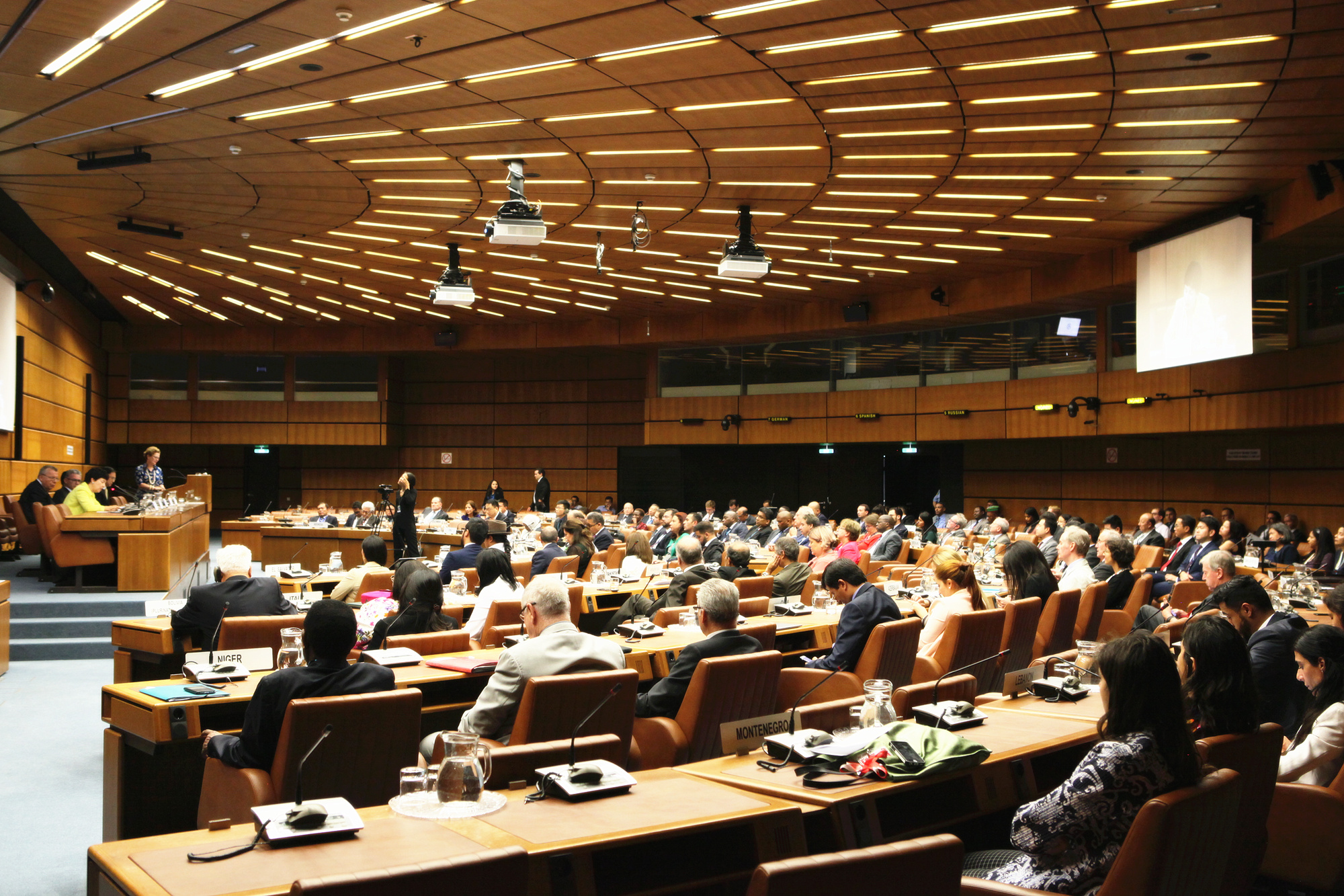 王毅致电祝贺77国集团维也纳分部成立20周年