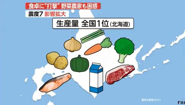 强震重创日本北海道农业 农户为了奶牛健康挤完奶直接倒掉