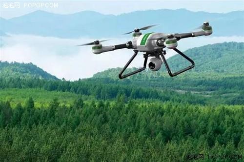 """四川:用无人机给松树林""""把脉"""""""