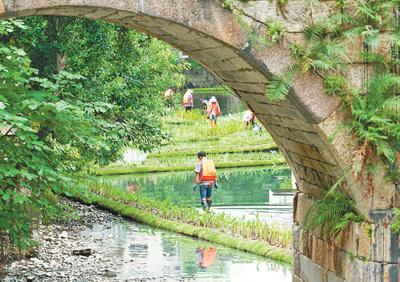 提升河水自净能力