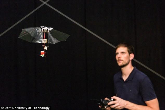 荷兰研究者发明外形类似果蝇的可飞行机器人