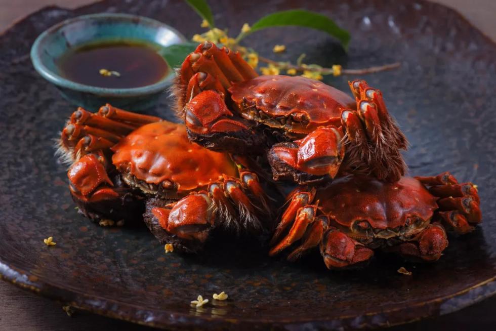 阳澄湖大闸蟹冒牌比例有多高?看完数据惊了