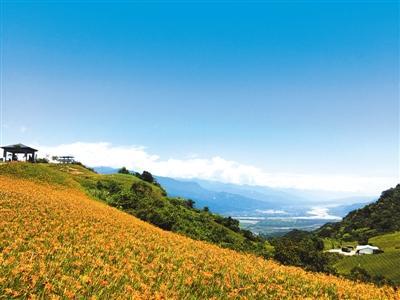 行摄台湾:台湾最美金针花海