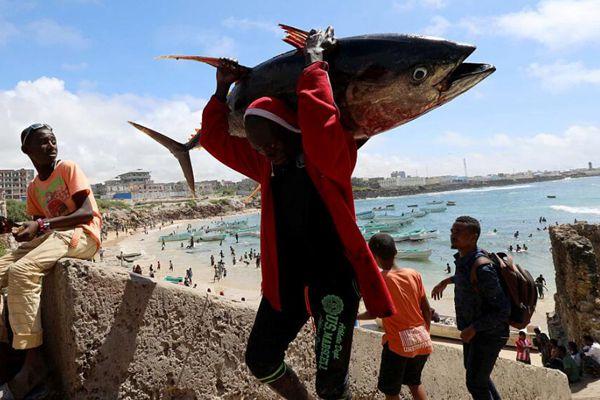 实拍索马里海滩生活 民众惬意戏水捕获肥美金枪鱼