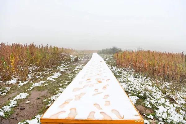 九月白茫茫!这个地方的积雪都有6厘米深了