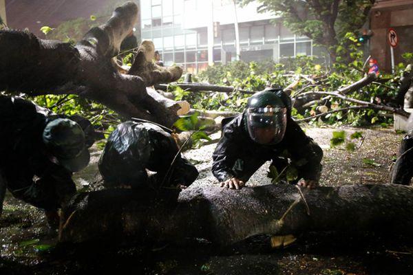 """""""山竹""""过境后大树被连根拔起 武警官兵昼夜清理路障"""