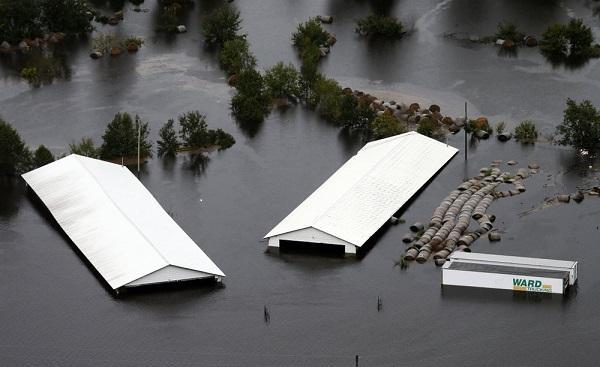 """""""佛罗伦斯""""袭美致16死 民众排几小时长队抢购水"""
