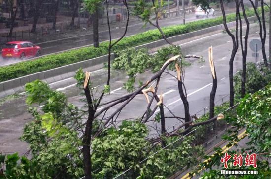 """台风黄色预警:""""山竹"""" 今晚将减弱为热带低压"""