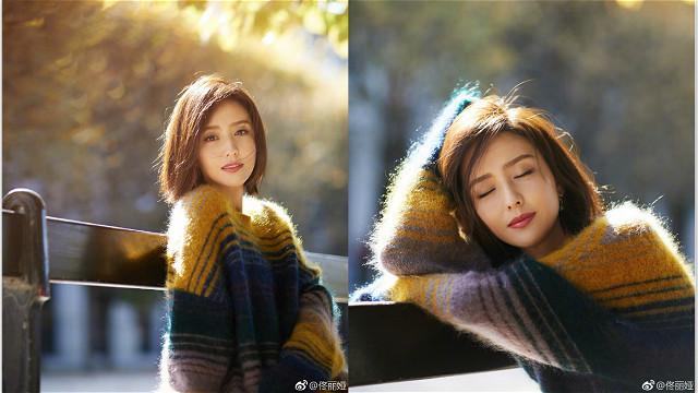 佟丽娅穿拼色毛衣闲坐长椅