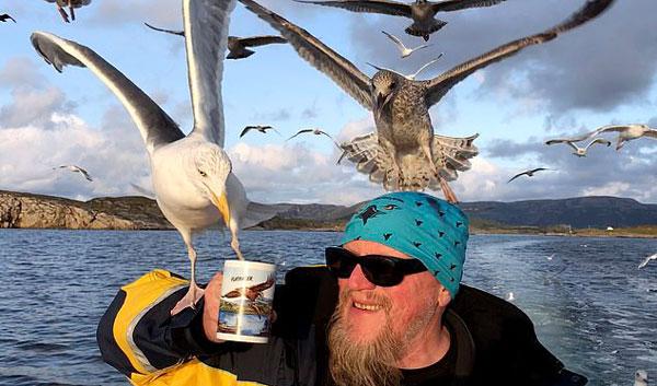 有爱!挪威海鸥空降船甲板大口饮茶与船长自来熟