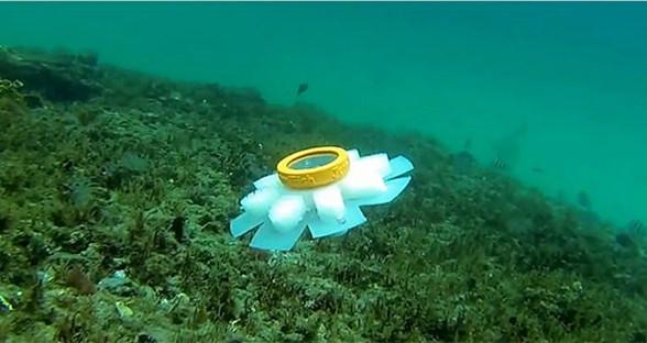 科学家发明软体机器水母 用于探测海洋生态环境