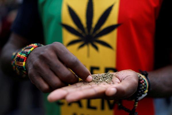 南非宣布私用大麻合法,但在公共场合使用和进行交易仍属违法